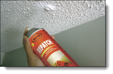 Stucco, Plaster & Popcorn Ceiling Patch